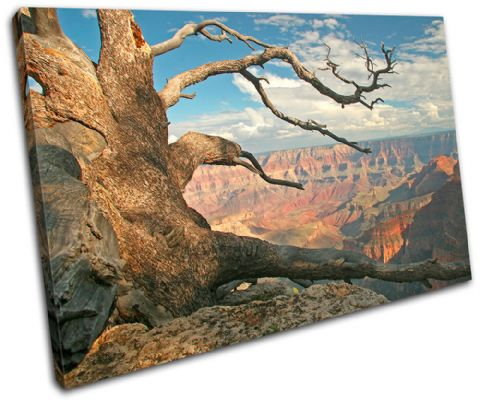 Grand Canyon Tree Landscapes - 13-0210(00B)-SG32-LO